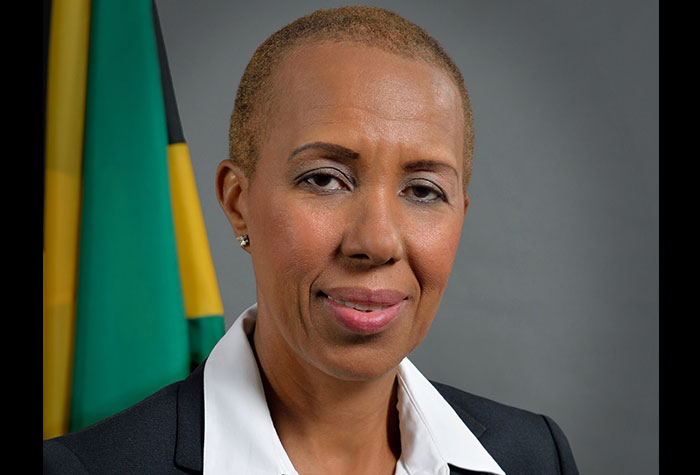 The Honourable Fayval Williams : Minister of  Science, Energy and Technology